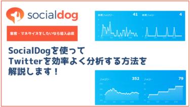 SocialDogを使ってTwitterを効率よく分析する方法を解説します!
